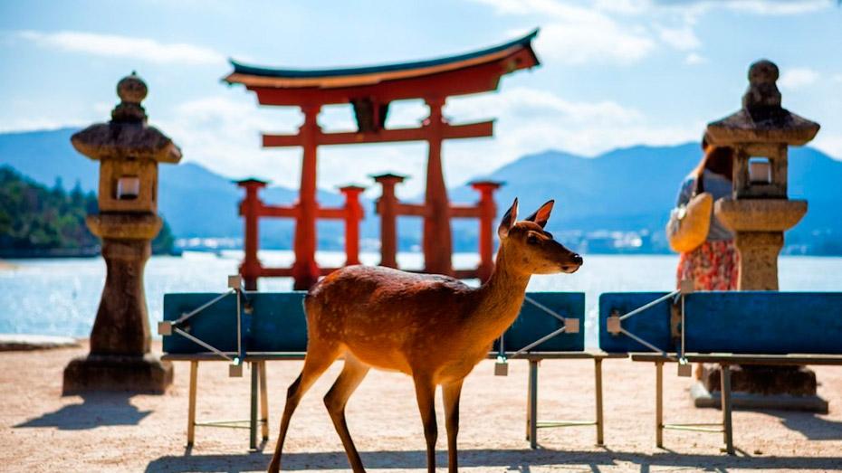 Святилище Ицукусима в Японии