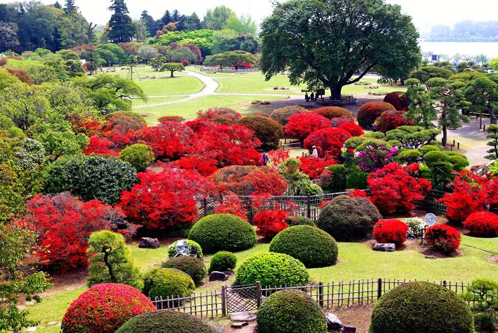 Японский сад Кайраку-эн